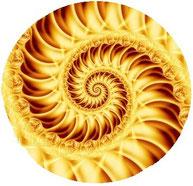 Bild goldene Spirale Fotolia 42626567