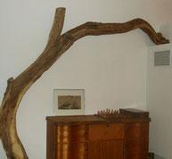 Naturkatzenbaum