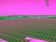 Größte Solaranlage 2004 von SOLARA Hamburg