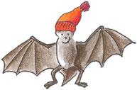 Fledermaus mit Mütze