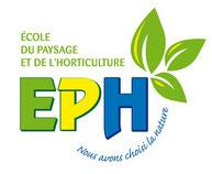 www.cefph.com