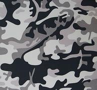 Артикул Camouflage col.1