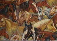 Nr.24 Pferde