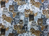 Nr.26 Katzenköpfe klein