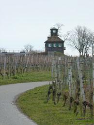 Wanderung auf der Reichenau: Hochwarth