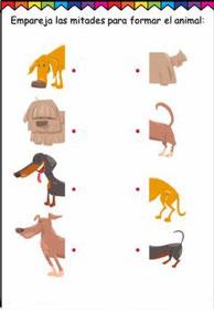 Une con flechas -Animales-