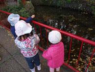 池でエサをあげる三人の子ども