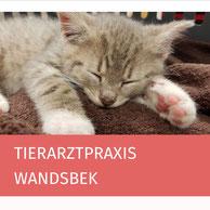 Tierarztpraxis Wandsbek, Susanne Gnass