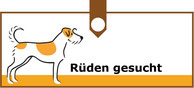 Wanted!!! Gesucht!