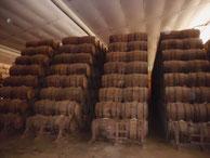 Conseils sur l'élevage et vieillissement des vins et eaux de vie