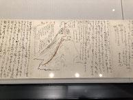 県立龍馬博物館。有名な新婚旅行の手紙。