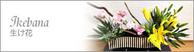 ギャラリー|生け花