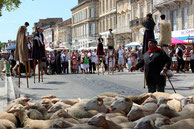 agneau,pauillac,fete,médoc,transhumance,quais,animation,culture,tradition