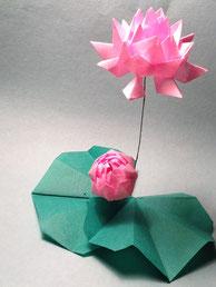 Love lotus, designed and folded by Teru Kutsuna