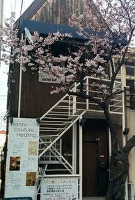 甲陽園駅徒歩1分 桜の木が目印 Massyは地下1階です。