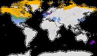 Karte zur Verbreitung der Meergänse