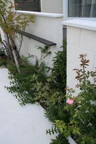 白い意匠塗り壁に映える植栽