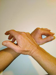 handposition  of a chiropractic treatment in horses