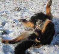 Ich im Schnee