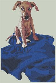 Stickprogramm Hund_01 17cm x 25cm