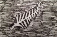 (NZ Flag Silver Fern)