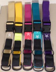 Kombi-Pferdehalsband (für computergesteuerte Fütterung)