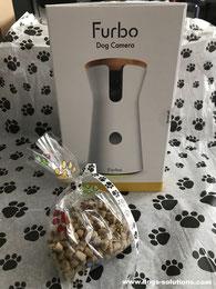 Boîte dog camera Furbo avec des friandises