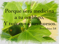 Proverbios 3:8