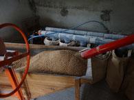 Le blé prêt à être moulu