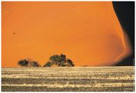 2002 NAMIBIE