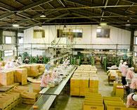 セット工場ライン