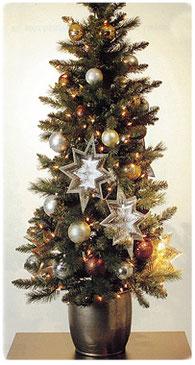 クリスマスツリー 横浜コットンハリウッド