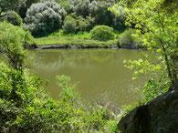 Fluss Coghinas