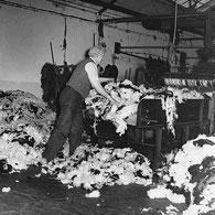 3) Mischen der gefärbten Wolle.