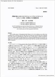 論文の表紙のイメージ