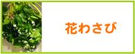 花わさび レシピ