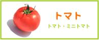 トマト レシピ
