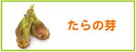 たらの芽 レシピ
