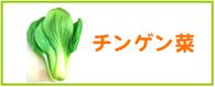 青梗菜 チンゲン菜 レシピ