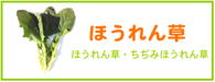 ほうれん草 レシピ