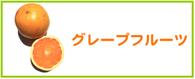 グレープフルーツ レシピ