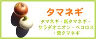 タマネギ レシピ