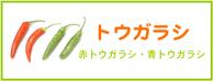 トウガラシ レシピ