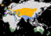 Karte zur Verbreitung der Gattung der Kasarkas