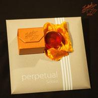 Saiten für Cello Perpetual Soloist Pirastro kaufen