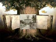 Pro Loco sissa albero della storia