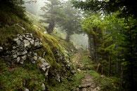Auf dem Weg zur Alp Siegel