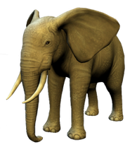 Artwork Meine Zoo-Tierarztpraxis 3D