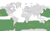 Karte zur Verbreitung der Familie der Albatrosse