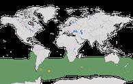 Karte zur Verbreitung des Schwarzbrauenalbatros (Thalassarche melanophris)